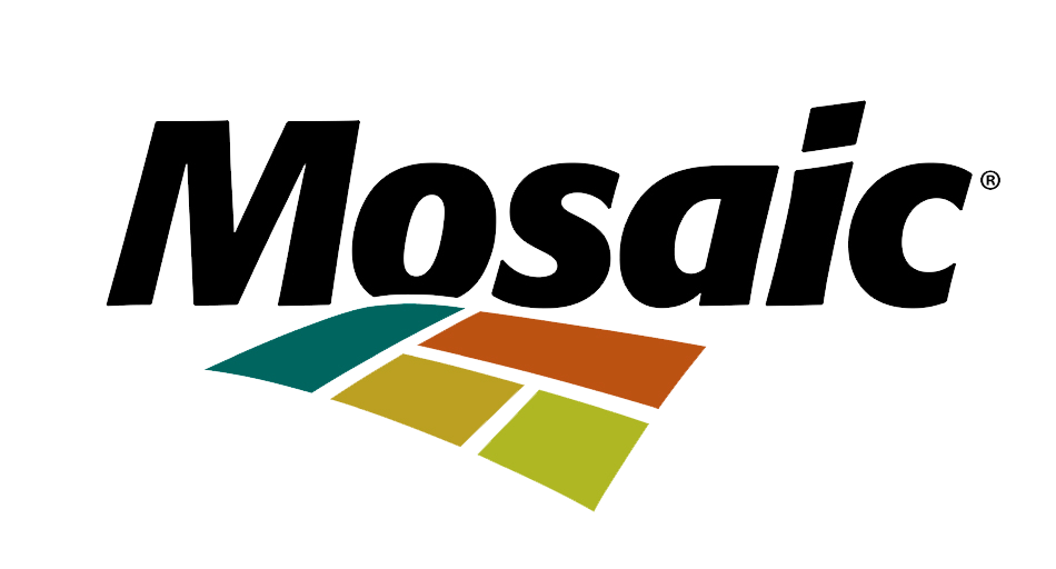 mosaic-colour-no-white
