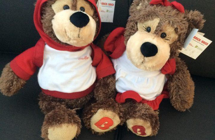 The Brick Brickley & Bricklea bears